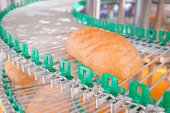 A loaf of fresh bread out of the oven on a conveyor belt on the background of the bakery. Agriculture Stock Photography