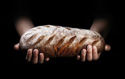 A loaf of freshly baked bread in the hands of a baker. On a black background royalty free stock images