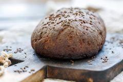 Loaf of artisan rye bread with cumin. Loaf of freshly baked rye bread with cumin on an old cutting board, selective focus Stock Photos
