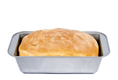Loaf of Homemade Bread Stock Image