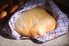 Loaf of homemade bread. With a white towel covering part of it Stock Image