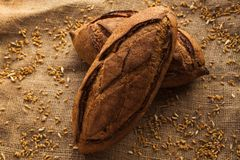 Loaf of homemade bread on sackcloth with rye. Stock Photography