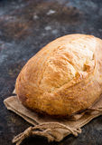 Loaf of homemade sourdough bread Royalty Free Stock Images