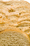 Loaf of  Jewish style onion rye bread Stock Photos