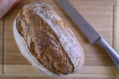 Loaf of Maia or Sourdough Bread. Loaf of maia bread, a rye sourdough bread on a wooden cutting board with a knife Royalty Free Stock Photography