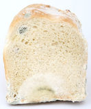 Loaf of mouldy brown bread. Macro close up, isolated on white Stock Photo