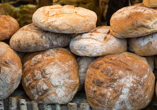 The  loaf of rustic bread Stock Image