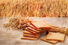 Loaf of rye bread on a background of ripe rye field at sunset. Loaf of rye bread on a background of ripe rye field Royalty Free Stock Image
