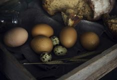 Loaf of rye bread with chicken eggs in wooden box. The Loaf of rye bread with chicken eggs in wooden box Royalty Free Stock Images