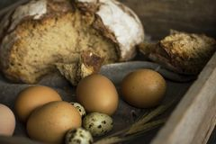 Loaf of rye bread with chicken and quail eggs in wooden box. The Loaf of rye bread with chicken and quail eggs in wooden box Royalty Free Stock Images