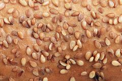 Loaf with sesame seeds. Stock Photo