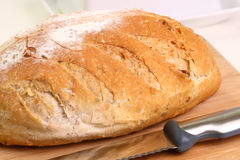 Loaf of whole wheat bread - sideview Royalty Free Stock Photography