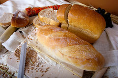 Loafs Stock Images