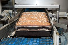 Loafs of bread in the factory. Loafs of bread being made in a factory Royalty Free Stock Images