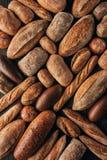 loafs de pão arranjados recentemente cozidos Imagens de Stock