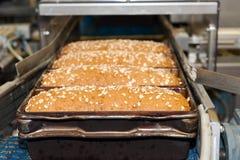 Loafs de pão na fábrica Fotografia de Stock Royalty Free