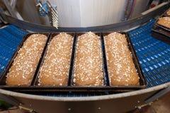 Loafs de pão na fábrica Imagem de Stock Royalty Free