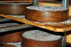 Loafs do queijo Imagem de Stock