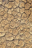Loam in a saline basin Stock Photos