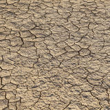Loam in a saline basin Royalty Free Stock Images