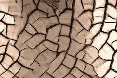 Loam soil dried out with cracks in the desert drought stock illustration