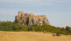 Loarre castle in Loarre, Spain with grazing horses Royalty Free Stock Photography