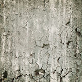 Loathsome texture from the peeled wall Royalty Free Stock Photos
