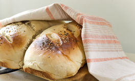 Loaves of Bread. Under dish-cloth royalty free stock photography