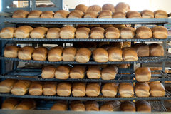 Loaves of Bread in a Bakery. Fresh loaves of bread in a local bakery Royalty Free Stock Photos