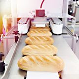 Loaves of bread on conveyor royalty free stock photos