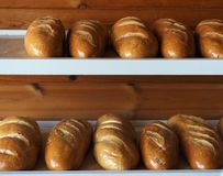 Loaves Of Bread. Sitting on shelf in bakery waiting to be sold royalty free stock photos
