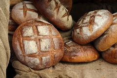 Loaves of bread. A lot of loaves of bread Stock Images