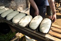 Loaves of bread. Ready for baking royalty free stock photos