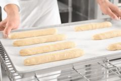 Loaves of bread on shelving. In bakery Stock Images
