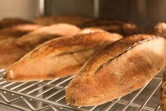 Loaves of bread on shelving. In bakery Royalty Free Stock Photo