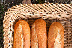 Loaves of French bread. Overhead view of three loaves of French bread in wicker basket royalty free stock photography