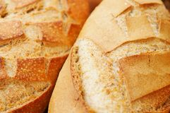 Loaves of Fresh Bread. Loaves of freshly baked rustic style bread royalty free stock photos
