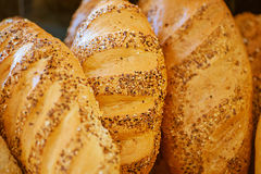 Loaves of fresh white bread Stock Images