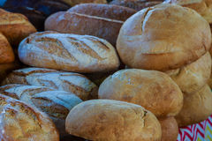 Loaves of Freshly Baked Bread. Various types and sizes of freshly baked breads royalty free stock images