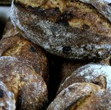 Loaves of Walnut Levain Bread. Loaves of artisanal, hand-made walnut levain bread made using local and organic ingredients, The bread is baked a wood-fired oven royalty free stock photo
