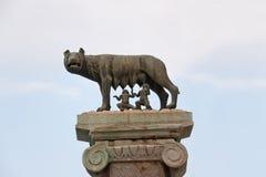 Loba Capitolina Stock Images