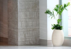 Lobby Planter. Hotel lobby planter with space alloted for text Royalty Free Stock Photo