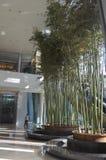 Lobbyhotell i porslin Royaltyfri Foto