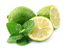 Lobes of lime with mint Stock Images