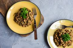 Lobio georgiano tradicional de la comida foto de archivo libre de regalías