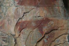 Lobo antigo da arte da rocha do nativo americano foto de stock