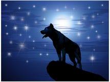 Lobo contra la luna y las estrellas stock de ilustración