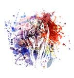 Lobo da ilustração de cor do vetor Fotografia de Stock