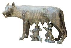 Lobo de Capitoline Fotografia de Stock Royalty Free
