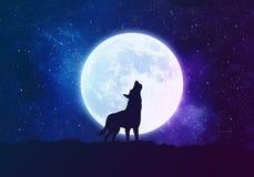 Lobo del concepto, hombre lobo delante de la luna en la noche Imagen de archivo libre de regalías